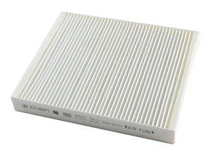 CF196 Cabin Air Filter, LWN 2.8L, 2016+Small
