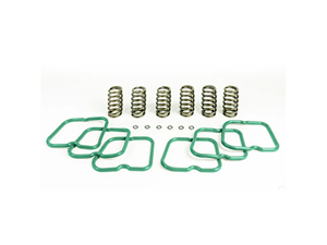 PBHP10241 PACBRAKE HP10241 BASIC VALVE SPRING KIT (6 SPRINGS) 1994-1998 DODGE 5.9L CUMMINSSmall