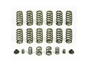 PBHP10245 PACBRAKE HP10245 VALVE & GOVERNOR SPRING KIT (12 SPRINGS) 1994-1998 DODGE 5.9L CUMMINSSmall