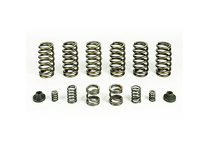 PBHP10246 PACBRAKE HP10246 VALVE & GOVERNOR SPRING KIT (6 SPRINGS) 1994-1998 DODGE 5.9L CUMMINSSmall